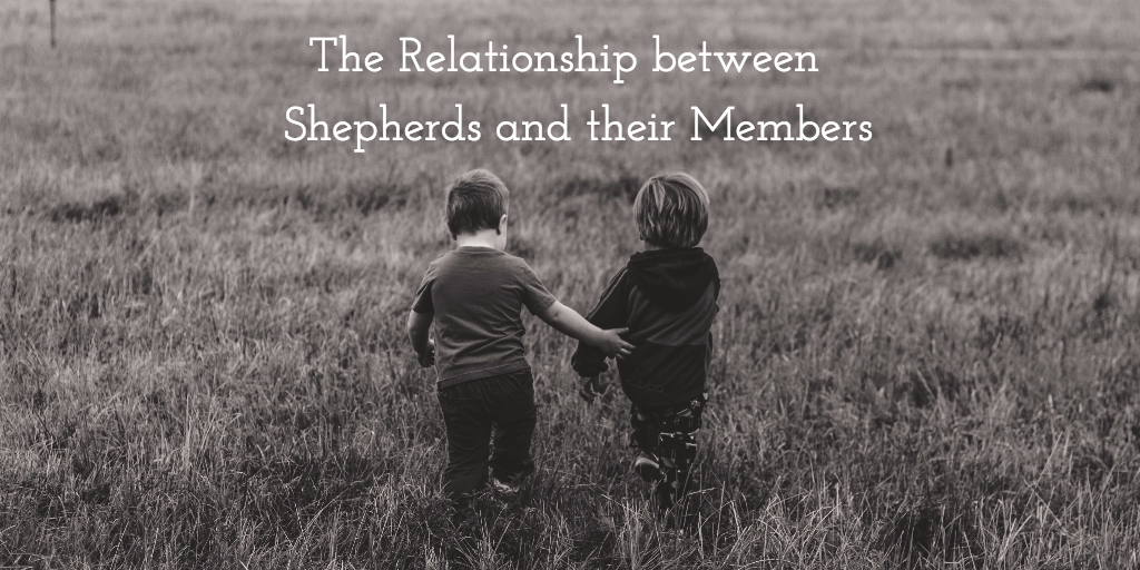 The Relationship between Shepherds and their Members