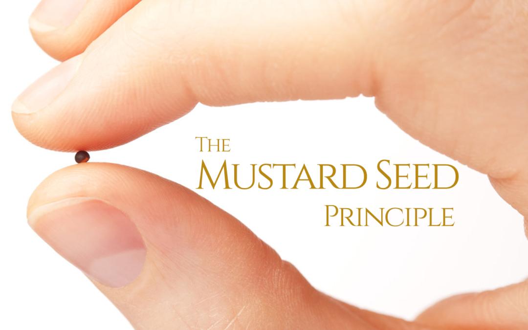 The Mustard Seed Principle