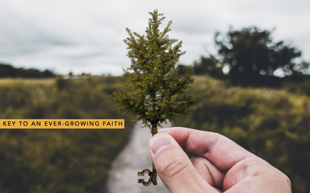 The Key to an Ever-Growing Faith