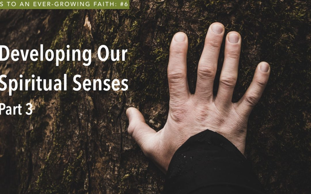 Developing Our Spiritual Senses – Part 3